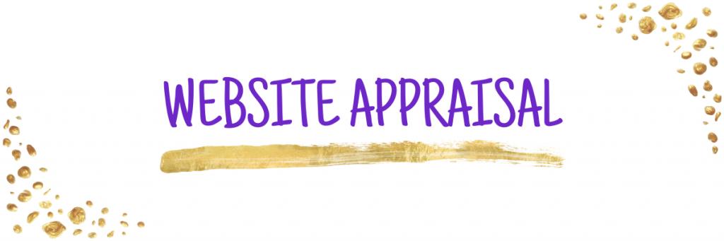 Ecommerce sales platform website audit appraisal web banner